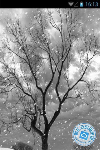 孤独的树动态壁纸