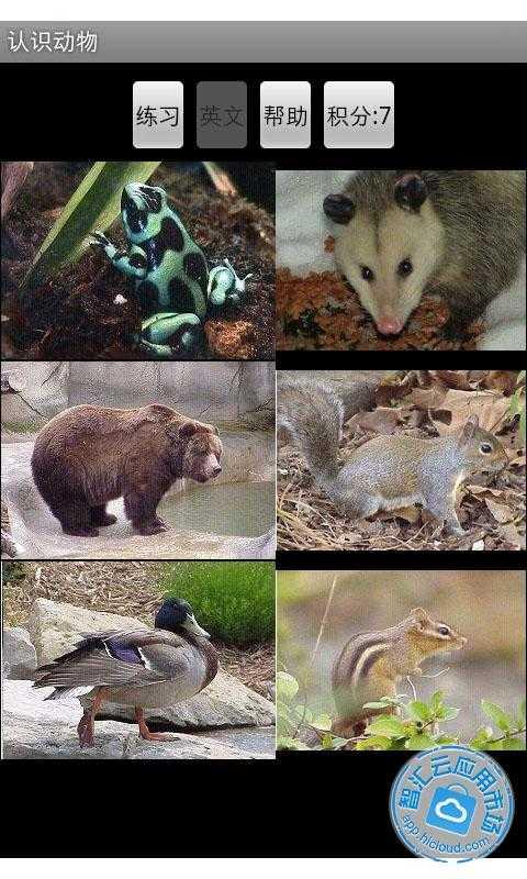帮助小朋友看图识动物