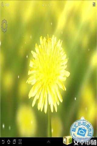 黄色花朵壁纸 介绍
