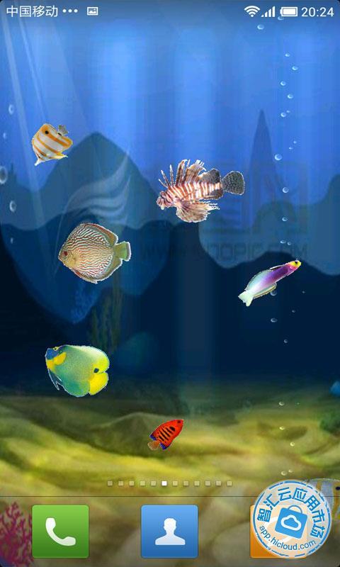 梦幻海底动态壁纸