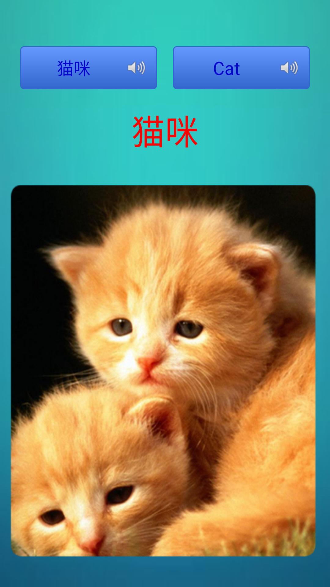 双语教学,宝宝成长伴侣;  每张真实高清的动物图片,配上对应的动物