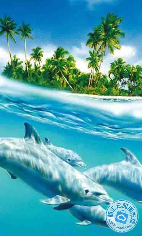 发现所有这些可爱的哺乳动物海豚的风景线