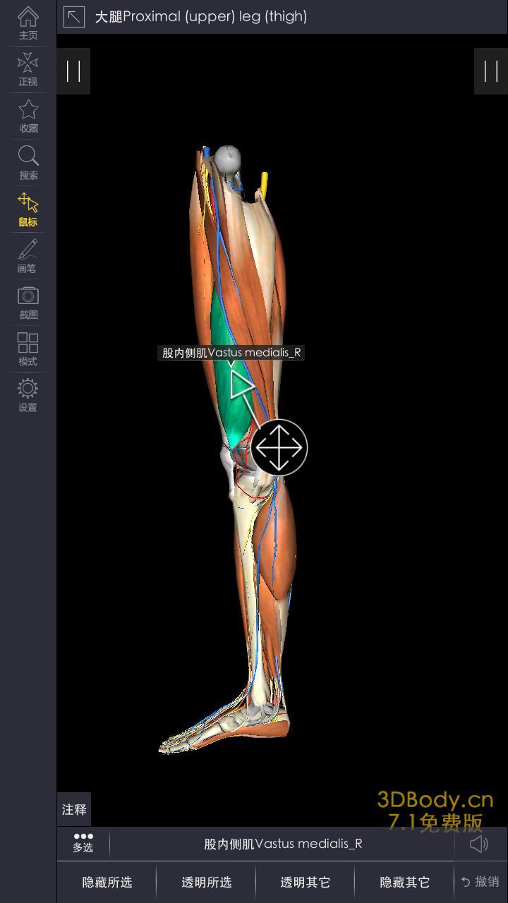 三维人体模型_3DBody解剖免费下载_华为应用市场|3DBody解剖安卓版(7.8.2)下载